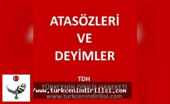 turkce dil bilgisi edebiyat sozluk nasil yazilir
