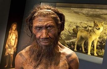 Neandertaller Hakkında Bilmediğimiz 10 Gerçek