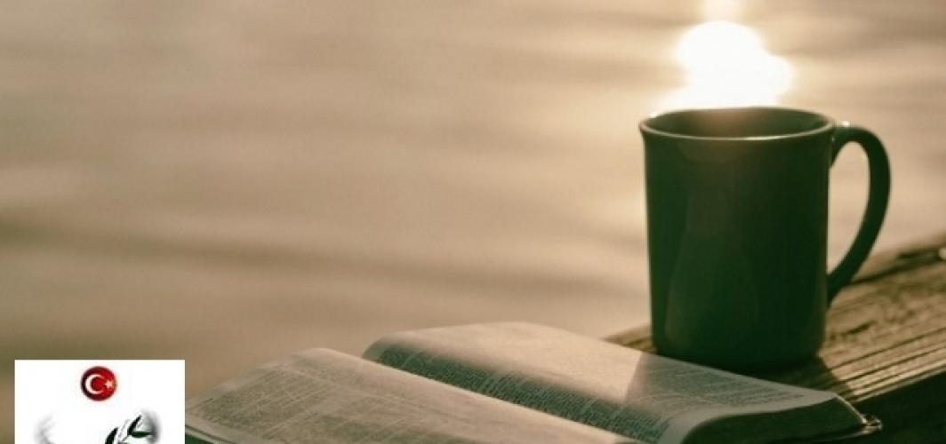 Kitap Özetleri: AGANTA BURİNA BURİNATA,HALİKARNAS BALIKÇISI (CEVAT ŞAKİR KABAAĞAÇLI)