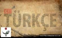Türkçenin lehçeleri ve yayıldıkları coğrafya, Türk dilinin ağızları, Türk dilinin şiveleri, Türk dilinin lehçeleri