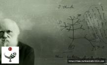 Darwin'in Sıradışı Yaşamı