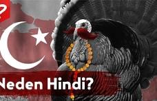 Turkey Kelimesinin Kökeni, Hindi Kelimesinin Kökeni, Hindiye neden Turkey diyorlar?