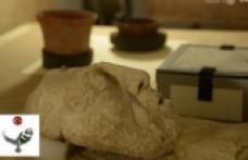 Maya Kralının Maskesi Bulundu