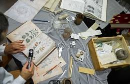 Dünyanın en önemli arkeolojik buluntuları