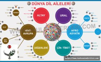 Dünyada Dil Aileleri, Dünya Dillerinin Sınıflandırılması