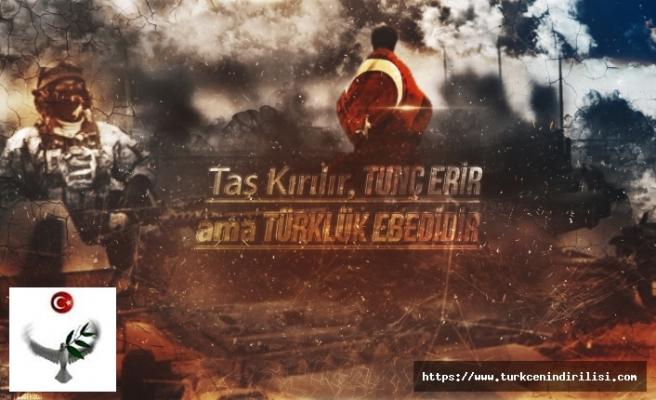 Türkçü ve ülkücülerin en çok paylaştığı yazı
