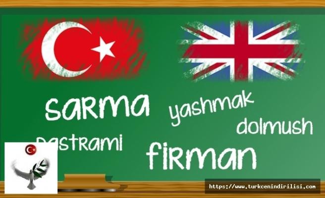 Türkçeden İngilizceye geçen kelimeler, Türkçeden yabancı dillere geçen kelimeler nelerdir?