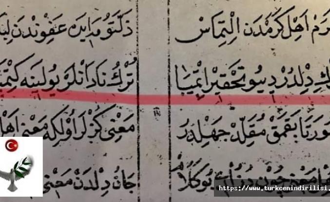 Türkçe yazmak bir zamanlar tahkir olarak görülürdü