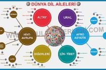 Dil Aileleri ve Türkçenin Dünya Dilleri Arasındaki Yeri