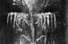 Sibiryadan Bir Petroglif
