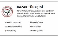 Kazakça Sayılar, KırgızcaSayılar
