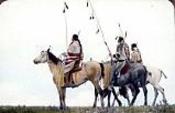 At kuyruğu bağlama geleneği - Nuray Bilgili
